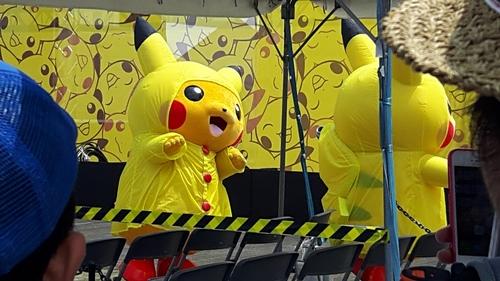 pikachu-landmark-81.jpg