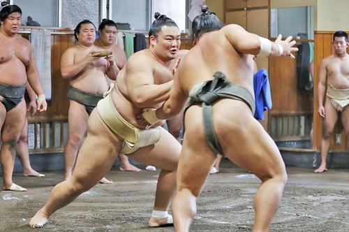 sumo_wrestler.jpg