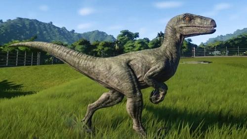 Velociraptor_bird.jpg