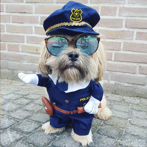 funny_dog_police.jpg