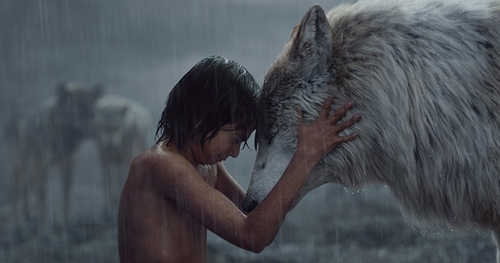 jungle_book_movie.jpg