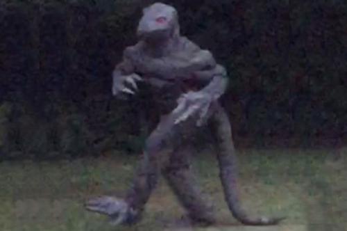 lizard-man-1.jpg