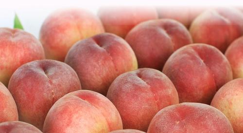 peach_fruit-2.jpg