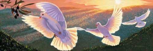 pigeon_olive.jpg