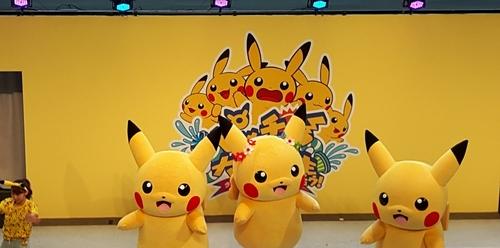 pikachu-landmark-31.jpg