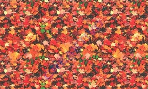 red_leaf_4.jpg